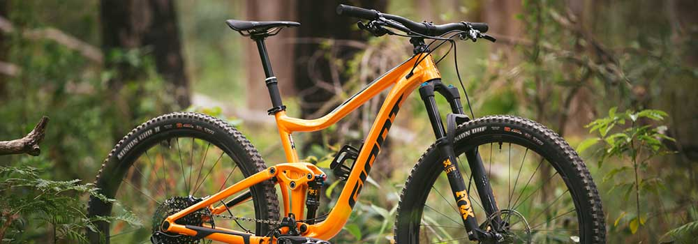 Your-First-Mountain-Bike-on-ExpertView